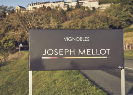 Joseph Mellot - Capture_SANCERRE 1017_177