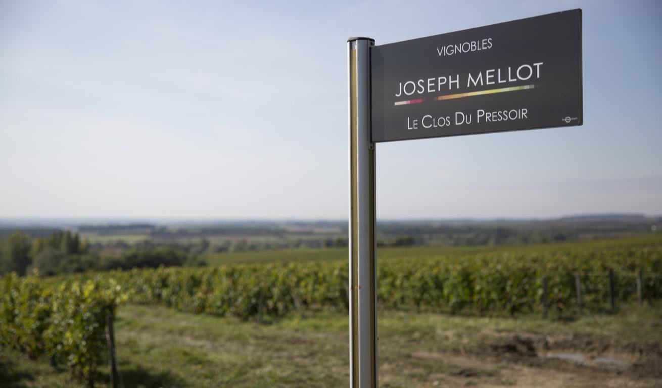 Joseph Mellot - MP7C7644