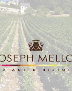 Joseph Mellot - Les paysages de Sancerre & Pouilly-Fumé
