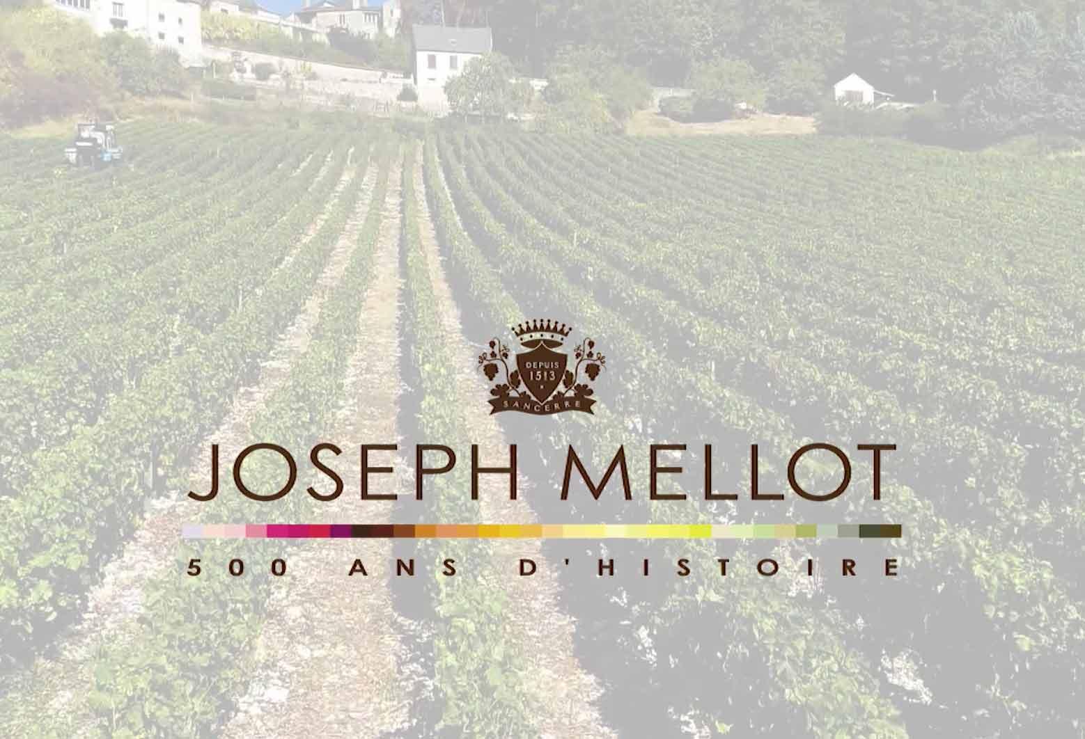 Joseph Mellot - Menetou Salon : 60 ans de l'appellation